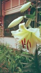 Photo02_2