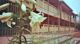 Photo03_3