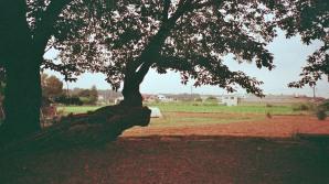 Photo13_13