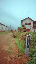 Photo17_17