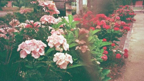 Photo21_21