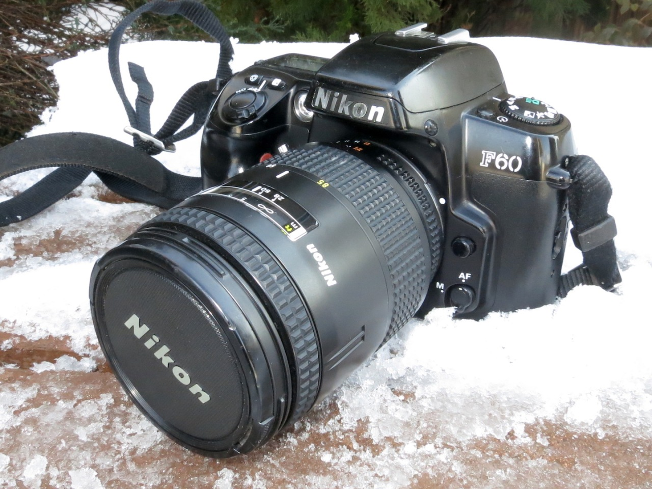 Nikon F60 (N60)