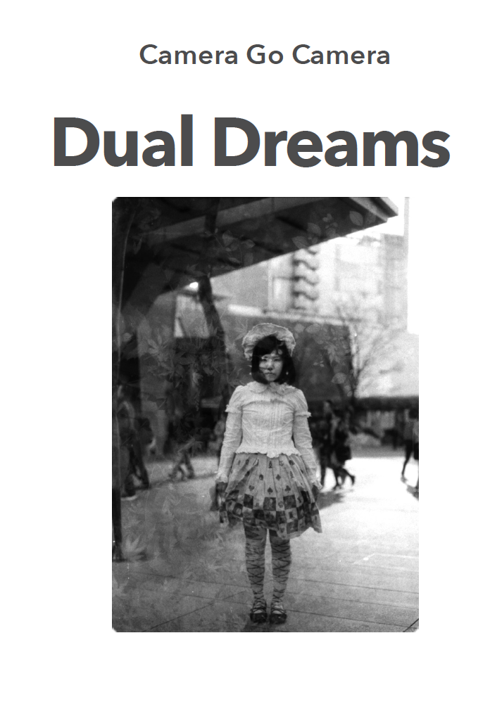 Dual Dreams Zine
