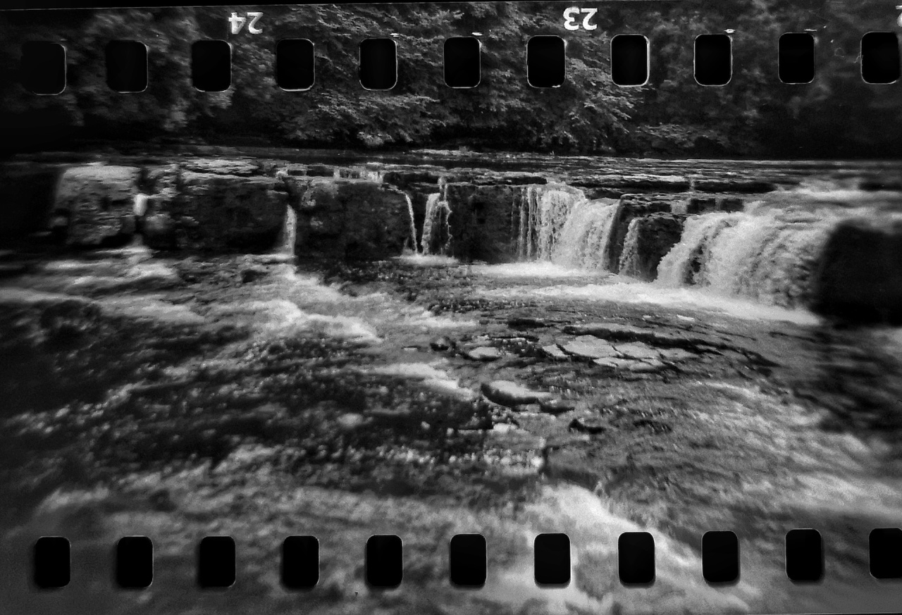 Photo Post: Holga CFN with 35mm film